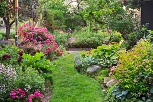perennialgardening