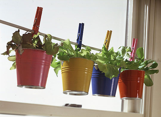 hanging container-garden