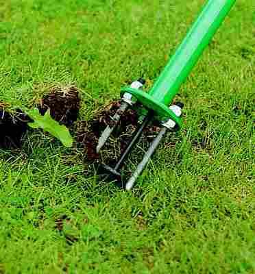 weed-pulling tool