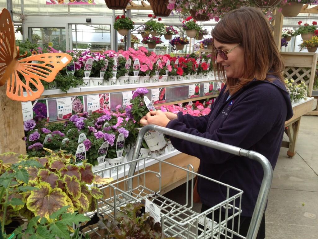 purchasing plants