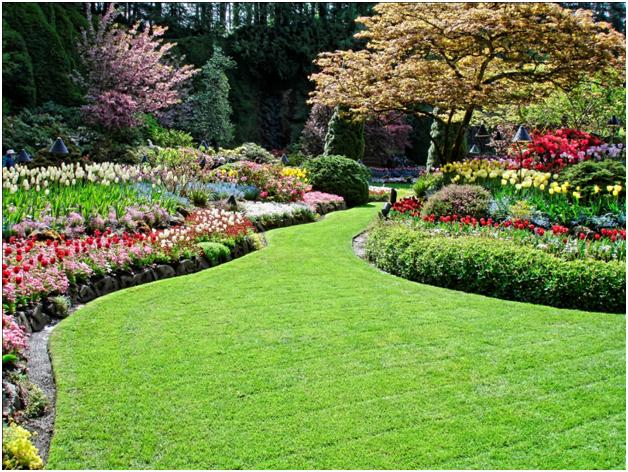 luxury landscaping designs