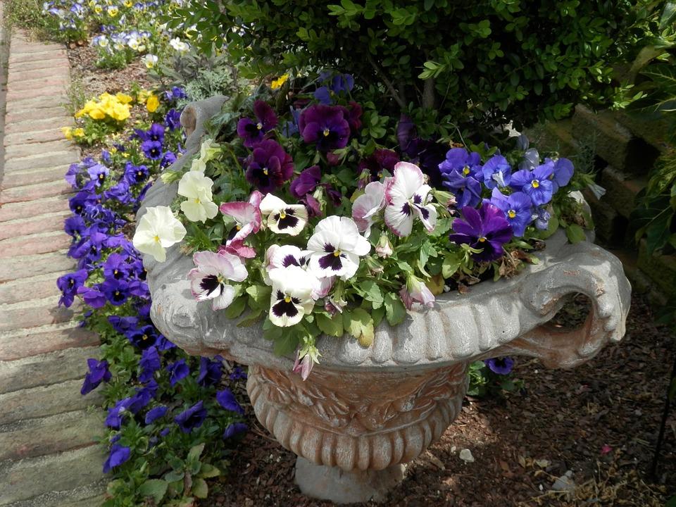 hypertufa planter with pansies